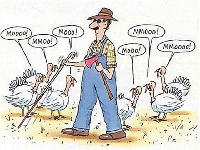 Happy Thanksgiving Funny