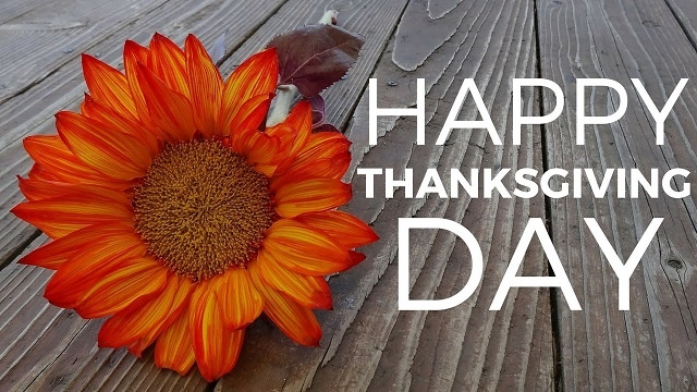 Beautiful Thanksgiving Day Pictures
